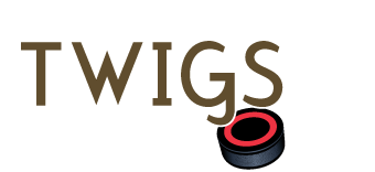 Little Twigs Hockey School Logo